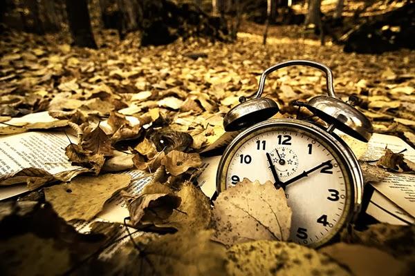Dê tempo ao tempo!